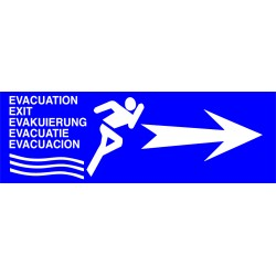 FLÈCHE ÉVACUATION FOND BLEU RECTO / VERSO  100 X 300 X 10