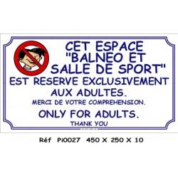 BALNEO SALLE DE SPORT 2L - 450 X 250 X 10