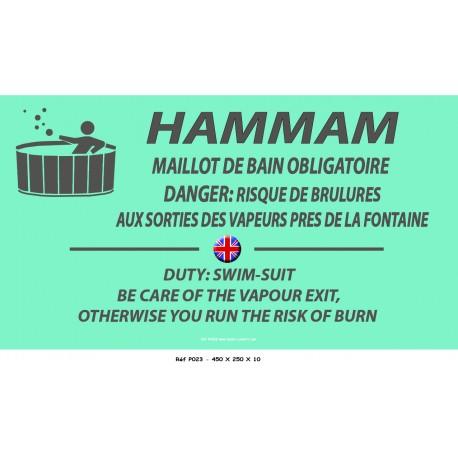 PANNEAU HAMMAM 2L - 450 X 250 X 10